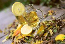 infuso te limone stevia