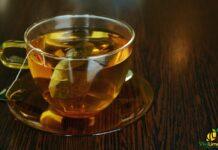 Tisana sgonfia pancia limone e anice